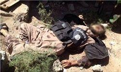 نابودی ۶ پایگاه داعش در استان دیالی عراق