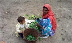 واکنش سازمان ملل به توافق دولتهای میانمار و بنگلادش