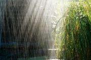 بارش ها شدیدتر می شوند
