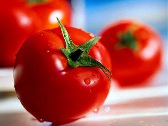 خواص شگفت انگیز گوجه فرنگی