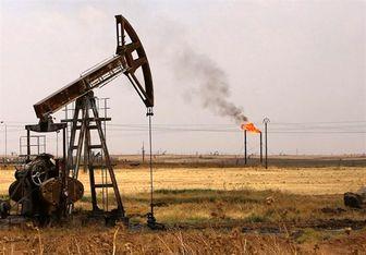 بهای نفت افزایش یافت