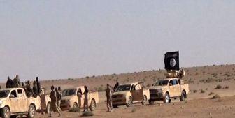 3000 داعشی از سوریه به عراق منتقل شدند
