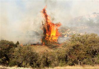 ۱۷ آتشسوزی در سرزمینهای اشغالی به دلیل پرتاب بادبادک آتشین