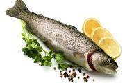 خواص فوق العاده ماهی را دست کم نگیرید