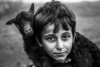 تجلیل از عکاسان ایرانی در جشنواره عکس مونتهنگرو