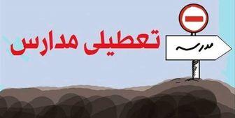 دلیل مخالفت مجلس با بازگشایی مدارس و دانشگاهها/ نحوه برگزاری امتحانات