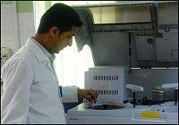 آغاز پروژه تولید اعضای پیوندی انسان در بدن حیوانات