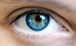 کشف سلولهای بنیادین در چشم