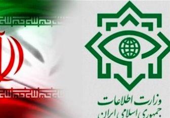 دو شبکه بینالمللی قاچاق مواد مخدر در کرمان منهدم شدند