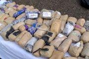 نگرانی یوسفنژاد از وجود ۷۰۰ نوع مواد مخدر در جامعه