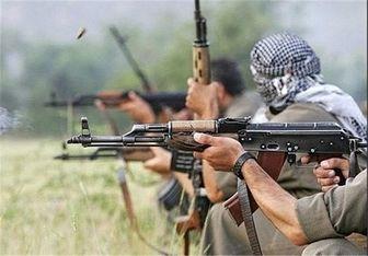 عاملین ترورهای افراد عادی در کامیاران دستگیر شده اند