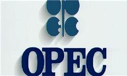سبد نفتی اوپک رکورد زد