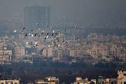 ذرات معلق دست از سر تهران برنمیدارد