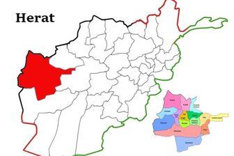 حمله مسلحانه به مسجدی در ولایت هرات