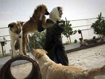 وقتی سگ و گربه ها از انسان ها باوفاتر شدند!