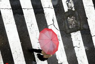 چهارشنبه بارش ها بیشتر می شود