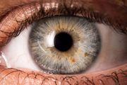 شناسایی ویژگیهای شخصیتی با حرکت چشمها