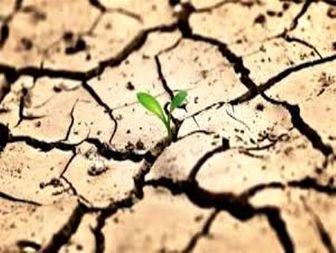 بحران بی آبی زنگ خطری برای هویت هزار ساله میناب