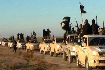 انتقال خانواده های عناصر داعش به محلی نامعلوم