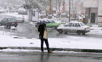 پیش بینی تعداد کافی تاکسی در پایانههای تاکسیرانی در روز برفی پایتخت
