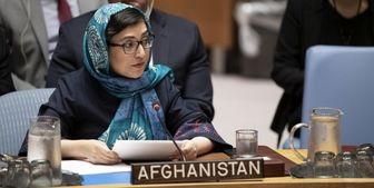 افغانستان در کنار مردم فلسطین ایستاده است
