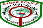 افزایش جرائم اینترنتی
