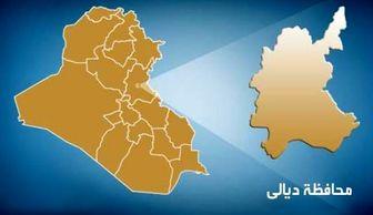 داعش سه تن از سرکردگان خود را اعدام کرد