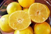 ۱۰ خاصیت لیمو شیرین که سلامت شما را در پاییز تضمین میکند
