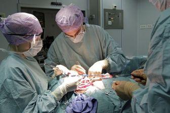 تشریح وضعیت پیوند از افراد مرگ مغزی در ایران
