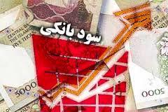 چرا سود روزشمار در ایران ایجاد شد؟