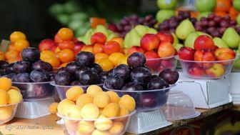 بازار میوه های وارداتی رونقی ندارد/ افت ۱۰ درصدی قیمت میوه در این هفته