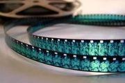 کارگردان «من دیوانه نیستم» به دنبال ساخت فیلم جدید