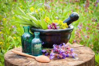 تاثیرات درمانی گیاه دارویی آقونیطون