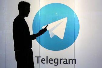 حضور 500 ساعته هر ایرانی در تلگرام