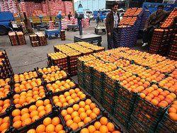 قیمت عمده فروشی انواع میوه و تره بار