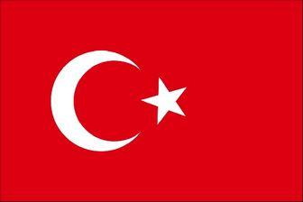 بازگشایی مرزهای ترکیه به روی شهروندان بیش از 30 کشور جهان