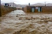 جزئیات آخرین تمهیدات بهداشتی وزارت بهداشت در مناطق سیلزده