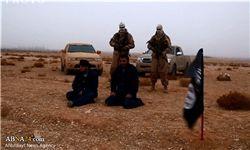 دستگیری ۷ عضو داعش در ترکیه