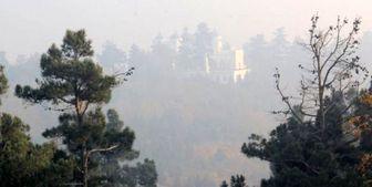 ترک فعل مسئولان؛ علت اصلی آلودگی هوای کلانشهرها