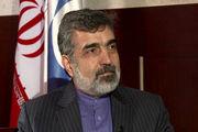کمالوندی: نیروگاه بوشهر کاهش بهرهوری ندارد