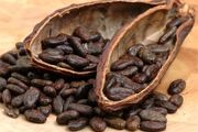 محافظت کاکائو از قلب در زمان استرس