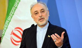 پیشبرد سیاست خارجی ایران در نهایت عقلانیت