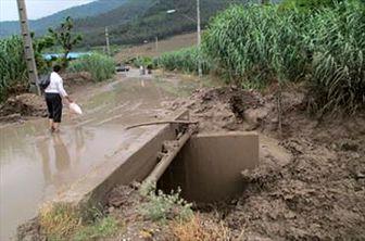 سیل بیش از ۹۵۰ میلیارد ریال به گلستان خسارت زد