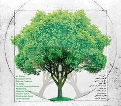 نمایشگاه درخت به یاد عباس کیارستمی