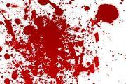 قتل در پی نزاع بر سر جای پارک