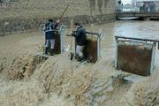 امدادرسانی تکاوران ارتش به سیلزدگان/ عکس