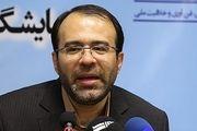 نوسانات سکه وزیر اقتصاد را به مجلس کشاند