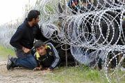 انتقاد مرکل از کشورهایی که به مهاجران بی توجهند