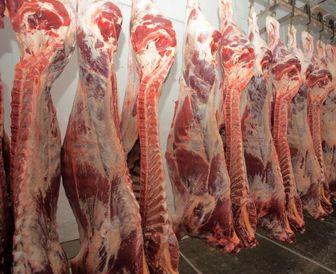 قیمت گوشت قرمز در اردیبهشت کاهش مییابد