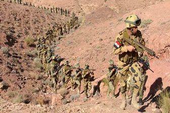 ۹ کشته و زخمی در حملاتی در صحرای سینا